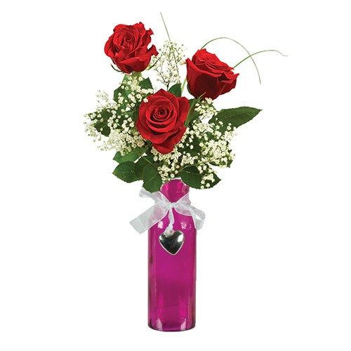 3_rose_red_arrangement_with_magenta_container