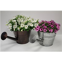 300_Farm_Chic_Watering_Can_(5)