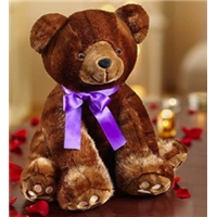 Brown-Bear-Sable-for-Valentines-day
